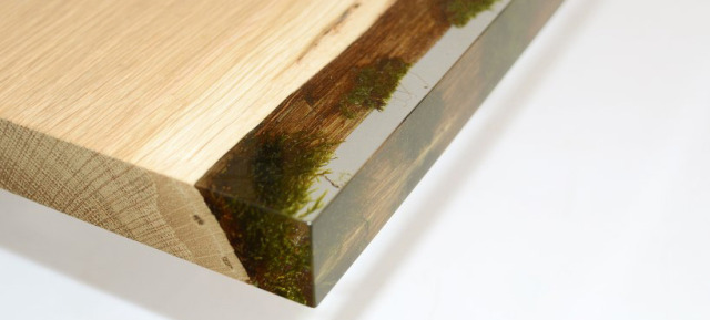 bookcase with moss 2